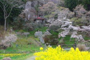栃木の自然:堂の下の岩観音