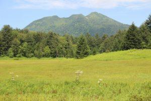 栃木の自然:沼山峠から尾瀬沼周回