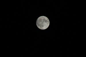 栃木の自然:宇都宮駅東から見た月