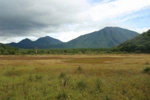 栃木の自然:小田代原の自然と日光の山々