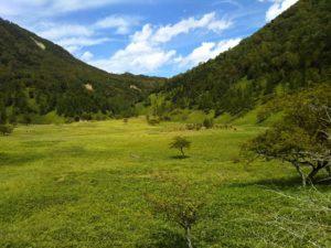 栃木の自然:涸沼は静かな憩いの場所