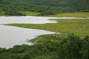 近県の自然:雄国沼は天空の楽園