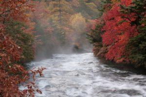 栃木の自然:竜頭の滝
