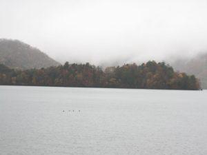 栃木の自然:中禅寺湖八丁出島の紅葉2019