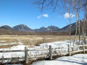 栃木の自然:雪融けの小田代ヶ原