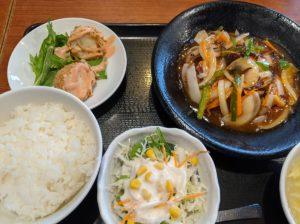 栃木の美味いもの:暖龍の日替わりランチ