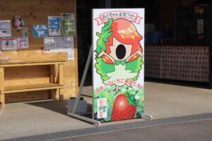 栃木の美味いもの:とちあいかなら美土里農園