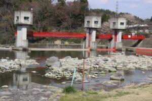 栃木の名所:那須疏水公園の桜